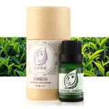 Olio puro all'ingrosso naturale puro dell'albero del tè del contrassegno 100% di Privatel
