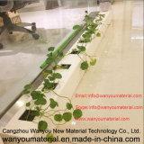 Tubulação do PVC para a aplicação hidropónica