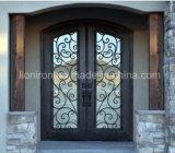 Elegantes Haus verwendete bearbeitetes Eisen-Eintrag verwendete vordere doppelte Türen