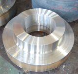 Bride de pièce forgéee de grand diamètre (300-6500mm)