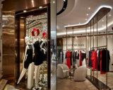 Disegno del negozio dei vestiti delle signore di primo tasso con la decorazione della visualizzazione del basamento della cremagliera del metallo