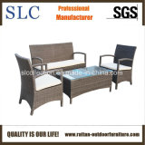 Sofa réglé/moderne de sofa de rotin de promotion de jardin (SC-A7428)