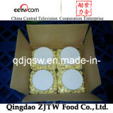 최신 Sale Top Quality 중국 Peeled Garlic (5Lb/Jar Packing)