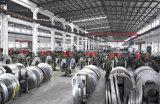 Tubo redondo del acero inoxidable de la alta calidad 304 50m m del surtidor de China