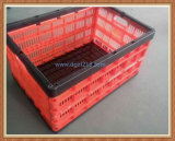 Plastic coloré Folding Storage Basket Container pour Fruits, Vegetable