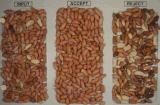 RGB Vsee Selector de la máquina de procesamiento de alimentos los cacahuetes Separador de clasificador de color