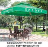 Paraplu (008)