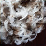 Plumes de canard blanc lavé de 2-4cm pour le remplissage
