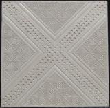 Muffa delle mattonelle del soffitto del gesso