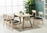 Feste hölzerne speisende Stuhl-Wohnzimmer-Möbel (M-X2950)