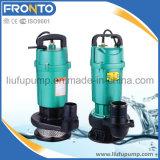 2 Zoll versenkbare wohle Pumpen-