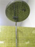 Misturador redondo do chuveiro do banheiro dos mercadorias sanitários de bronze contínuos (ARF5064)