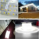 Natale bianco dell'indicatore luminoso di striscia di ETL 110V 220V 5050 LED esterno