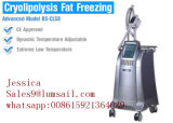 Corps beauté minceur Machine Cryolipolysis Coolsculpting Fat Gel de la machine