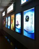 광고하는 가벼운 상자를 위한 Eco 용매 Backlit 애완 동물 필름