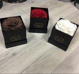 Contenitore conservato di lusso di fiore del piccolo nero di lucentezza