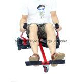 2つの車輪の小型電気スクーターのバランスをとっている10インチの自己