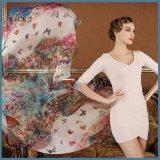 Netter Chiffon- Schal-Frauen-Georgette-Silk Schal-Schal-weiblicher langer Entwurf