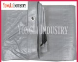 10mil duráveis Waterproof o encerado tecido polietileno de 2mx3m