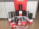 Komatsu 6D102 S6d102 гильзы цилиндра, Mahle производство