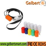 Gelbert Portable Capsule Shape USB Flash Drive 2GB