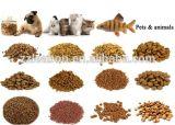China ließ Tierhundekatze Pet kleine sich hin- und herbewegende Fisch-Zufuhr-Nahrungsmittelpelletisierer-Maschine