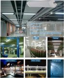 공장 가격 센서 IP65 세 배 증거 LED 빛