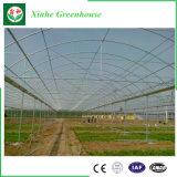 Policarbonato comercial de efecto invernadero de jardín para la investigación