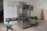 آليّة لزوجة لصوق عسل زيت/قشرة/[تومتو سوس] [بست&] سائل [فيلّينغ مشن] [سرفو-موتور] تحكّم تعبئة ([غت4ت-4غ]) [500-2800مل]