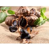 Süsse und saure Geschmack-Schwarz-Knoblauch-Reich-Nahrung
