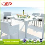 Neues Rattan Dining Set, Wicker Möbel, Patiomöbel (DH-9667)