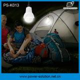 sistema ligero solar portable de 4W LED para el hogar con las luces solares de 2PCS LED