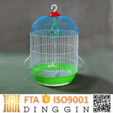 La cría de increíble hermosas jaulas de aves