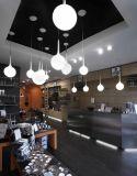 Glass 백색 Shade 거실 Floor Lights (406F3)