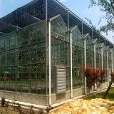 Serra di vetro di alluminio di Multispan
