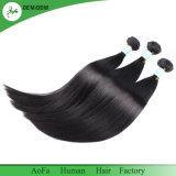 Seidiges gerades brasilianisches Haar mit der Schönheit gebildet in Aofa