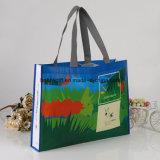 Способ рекламируя Non сплетенную хозяйственную сумку