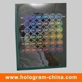 Master personnalisé en hologramme laser de sécurité