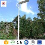 庭の通りの道のためのリモート・コントロールの1つの太陽街灯の最も新しいデザイン15W-120Wすべて