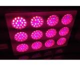 el hidrocultivo 12 LED del invernadero 216W~648W crece luces