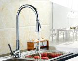 Scegliere il rubinetto della cucina della maniglia con estraggono il colpetto di miscelatore dello spruzzo