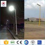 製造業者からの1つの太陽LEDの街灯の10W 15W 20W 25W 30W 50W 100W 120Wすべて