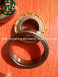 Roulements à rouleaux cylindrique N1010k Nn3010k