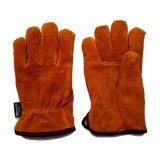 Gestionnaires de l'hiver de cuir fendu de vache fonctionnant des gants avec la pleine garniture de Thinsulate
