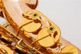 Cuivre rouge Saxophone ténor ----l'Italie Pads, prix bon marché