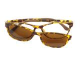 대중적인 새로운 확대경 Tr90 안경알 프레임