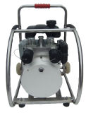 De draagbare Hydraulische Pomp van de Motor (dubbele transmissie)