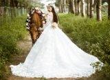 من كتف زفافيّ [ودّينغ غون] ثوب زفافيّ ([تجبلكت006])