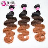 De nieuwe Bundels van het Menselijke Haar van het Haar van de Kleur 1b/4/30 van Ombre van het Haar van de Golf van het Lichaam van de Manier Maleise Maagdelijke Weft Volledige