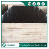 El negro/la película de Brown hizo frente a la madera contrachapada impermeable para el encofrado concreto
